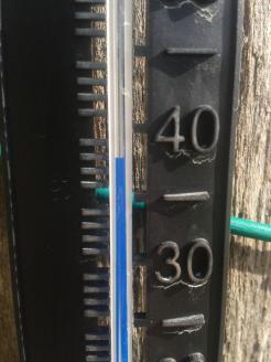 Hot day. 38°C (100°F)